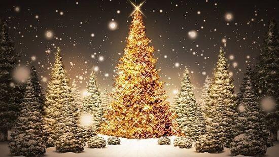 Per Fare Gli Auguri Di Natale.Natale Auguri Gli Auguri Natalizi Piu Belli Della Festa